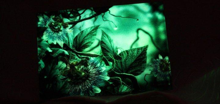 Скидка 30% на светящиеся картины написанные акрилом с добавлением фосфорной краски